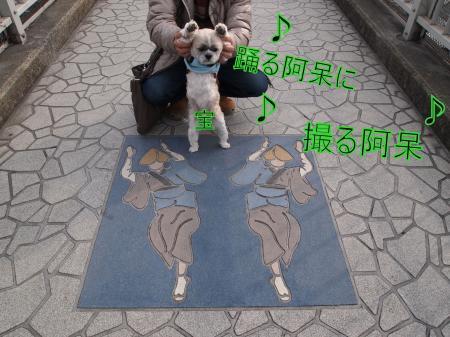 ・搾シ捻2061463_convert_20110310001427
