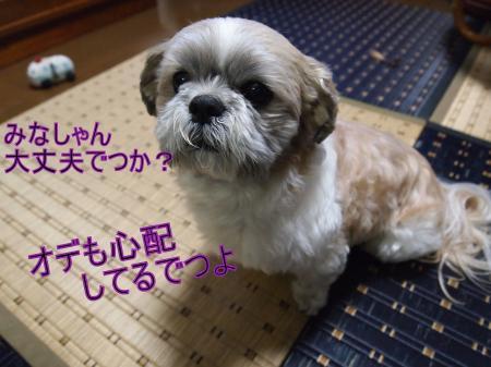 ・搾シ鳳3112213_convert_20110311204016