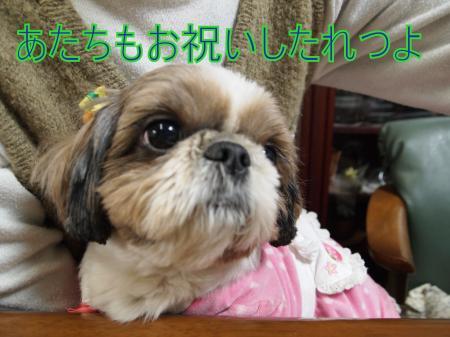 ・搾シ儕3132226_convert_20110317020656