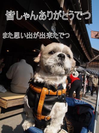・搾シ撤2041033_convert_20110311022733