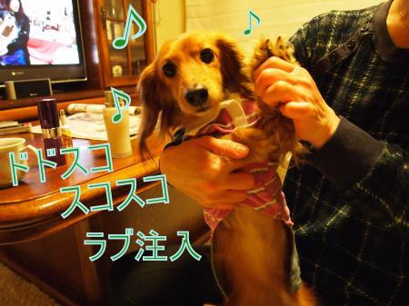 ・搾シ姫3172271_convert_20110323012102