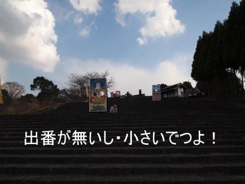 ・搾シ鳳3282369_convert_20110329153945