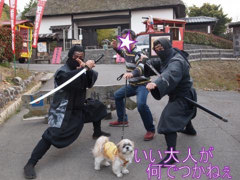 ・搾シ姫3282373_convert_20110330014603