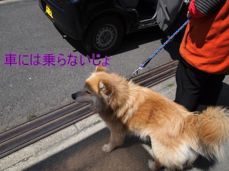・搾シ姫4062650_convert_20110407014019