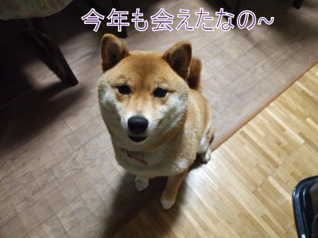・搾シ儕4082703_convert_20110410033043