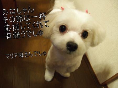 ・搾シ姫4022513_convert_20110410034413