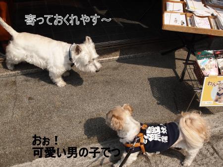・搾シ儕4112876_convert_20110419183237
