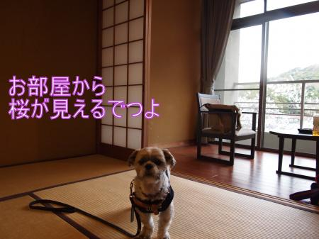 ・搾シ儕4112924_convert_20110421150057
