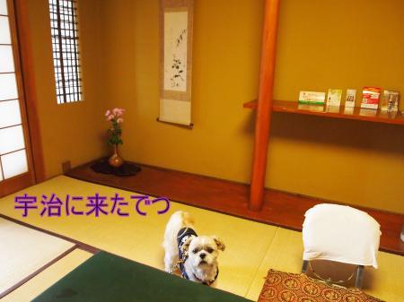 ・搾シ儕4112925_convert_20110421150145