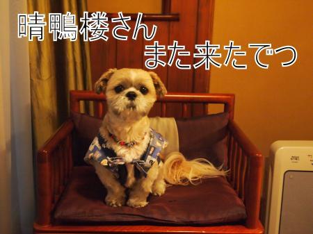 ・搾シ姫4123071_convert_20110425155554
