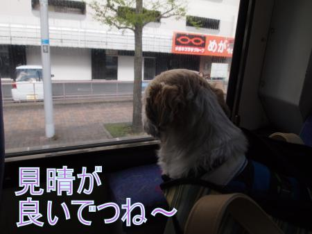 ・搾シ鳳4283533_convert_20110430215455