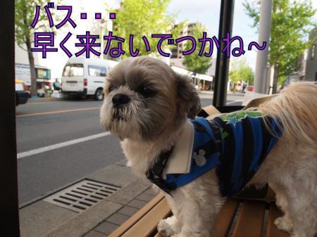 ・搾シ儕4283530_convert_20110430215800