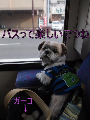 ・搾シ儕4283538_convert_20110430215825
