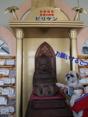 ・搾シ鳳4133191_convert_20110503143926