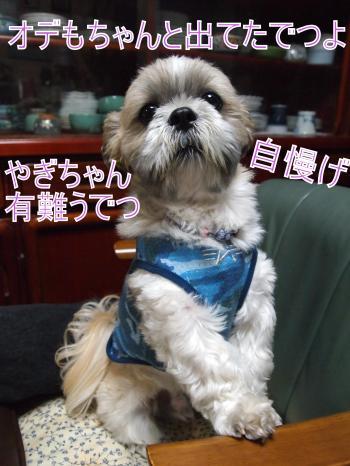 ・搾シ儕5083809_convert_20110512021746