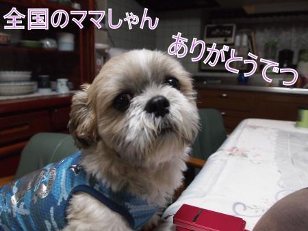 ・搾シ鳳5083805_convert_20110512211401