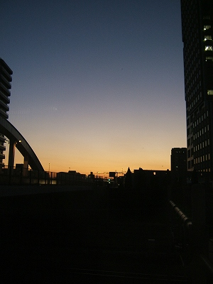 2010_11290065.jpg