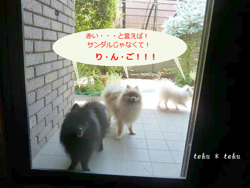 001_20110707213341.jpg