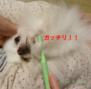 002_20110820165120.jpg