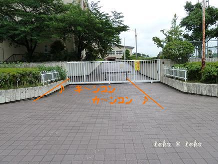 003_20110617221033.jpg