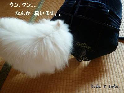 006_20110829220848.jpg