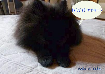 011_20110829221124.jpg