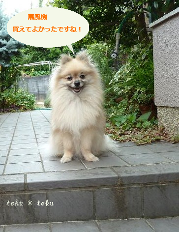ri_20110713214907.jpg