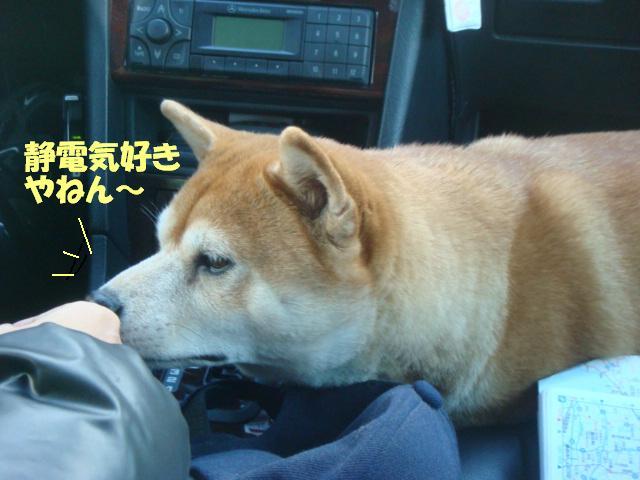 DSC07236ー編集