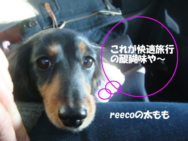 DSC07231ー編集