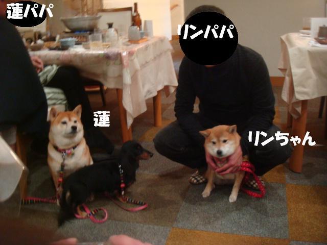 DSC07285ー編集