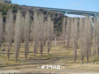DSC07395^編集