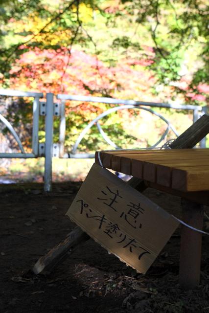 紅葉 黒石 中野もみじ山 青森県