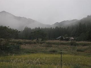 2011101-2生杉 032
