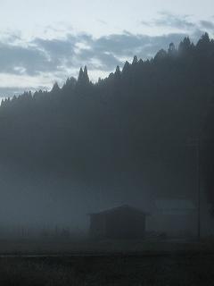 20111015-16生杉 005