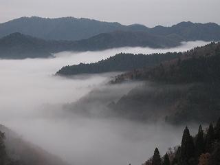 20111126-27生杉 018