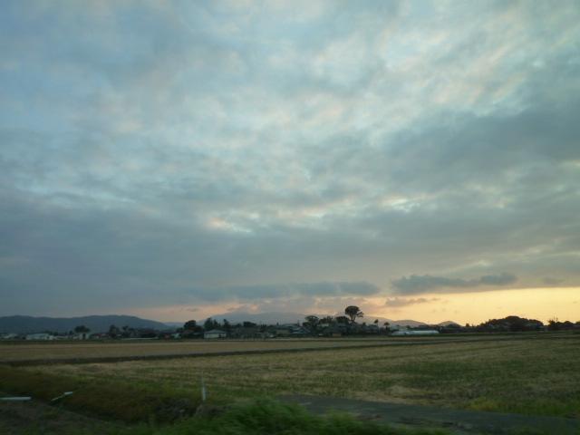 5:稲刈り数日後