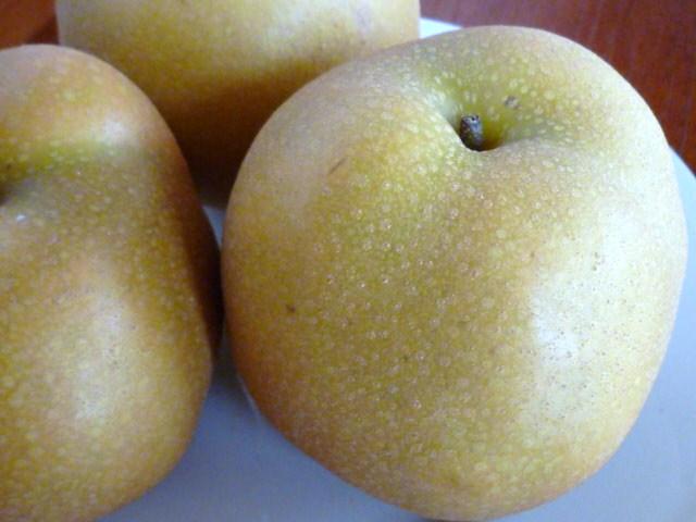 もらいものの梨