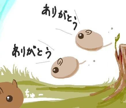 1311380272971607-crop.jpg