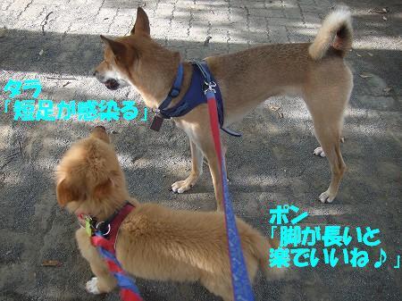 2009_0809_4.jpg