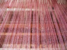 ラック樹脂染めAl媒染 経糸