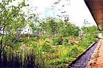 横浜開洋亭の空中庭園