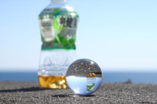 20110305七里ガ浜1