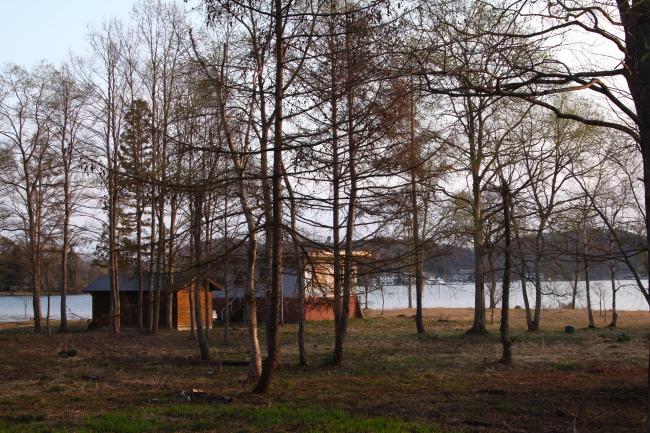 20110430野尻湖1