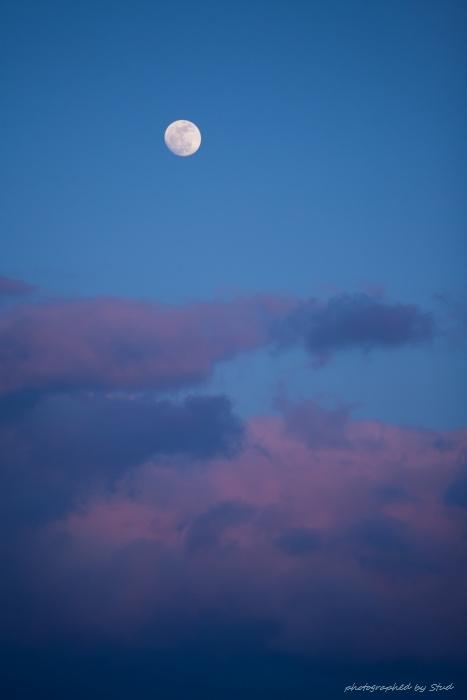 moon-pp1-81112151511112-3171.jpg