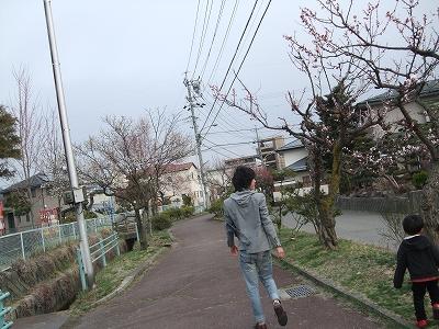 2011_04_11_0008.jpg