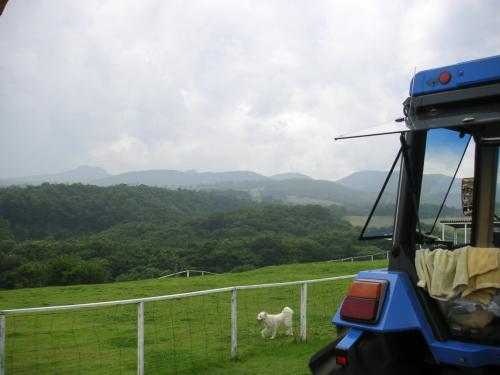 トラクターバス4