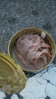 2011.12.29世界一臭い缶詰開封 (11)