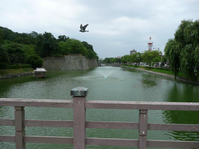 みその橋7