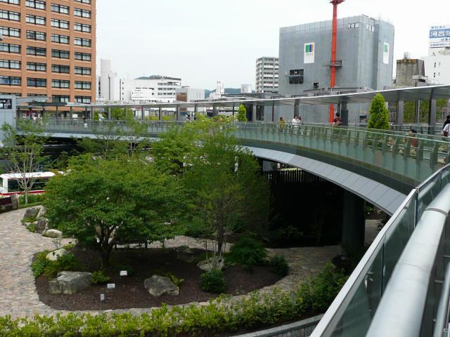 杜の架け橋3