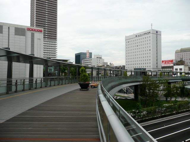杜の架け橋5